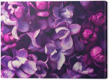 Tableau sur Toile Fleurs lilas fond.