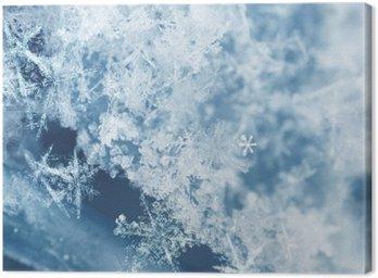 Tableau sur Toile Flocons de neige Frosty
