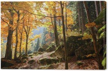 Tableau sur Toile Forêt en automne