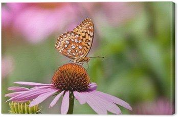 Tableau sur Toile Fritillaire Papillon d'alimentation sur coneflowers roses