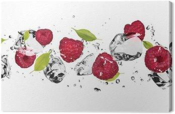 Tableau sur Toile Fruit de glace sur fond blanc