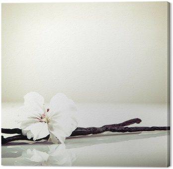 Tableau sur Toile Gousse de vanille et fleur