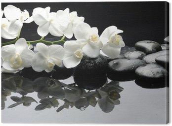 Tableau sur Toile Gros plan orchidée blanche avec de l'eau en pierre tombe