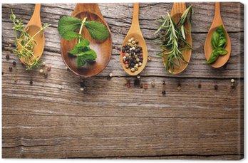 Tableau sur Toile Herbes et épices