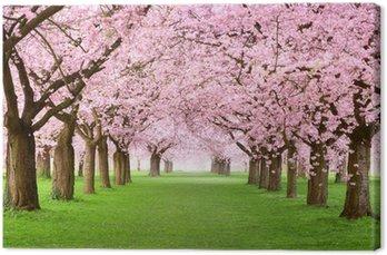 Tableau sur Toile Jardins en pleine floraison