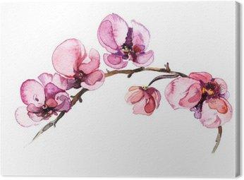 Tableau sur Toile L'aquarelle fleurs orchidée isolé sur le fond blanc
