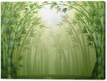 Tableau sur Toile Les bambous à l'intérieur de la forêt