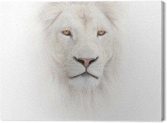 Tableau sur Toile Lion blanc sur le fond blanc