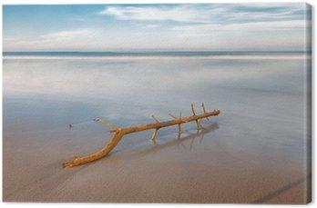 Tableau sur Toile Longue exposition sur la plage