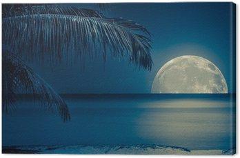 Tableau sur Toile Lune reflète sur l'eau d'une plage tropicale