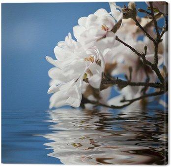 Tableau sur Toile Magnolia fleurs dans l'eau