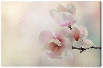 Tableau sur Toile Magnolia