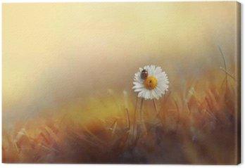 Tableau sur Toile Marguerites fleurs camomille coccinelle dans l'herbe sur fond d'or soleil d'été au coucher du soleil dans les rayons de lumière. Belle image romantique élégante artistique. Fond d'écran de bureau, cartes de voeux de conception.