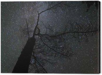 Tableau sur Toile Milky way paysage