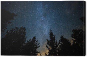 Tableau sur Toile Milky Way sur la forêt
