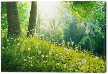 Tableau sur Toile Nature Printemps. Beau paysage. L'herbe verte et les arbres