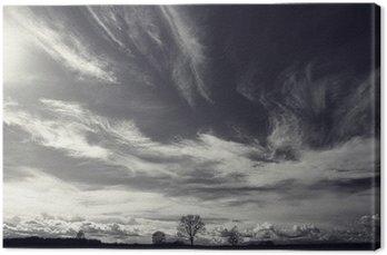 Tableau sur Toile Noir et blanc photo de paysage d'automne