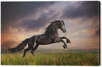 Tableau sur Toile Noir galop cheval frison