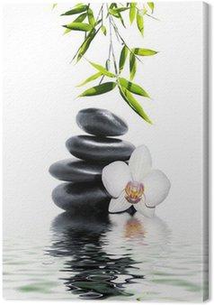 Tableau sur Toile Orchidée blanche fleur fin bambou