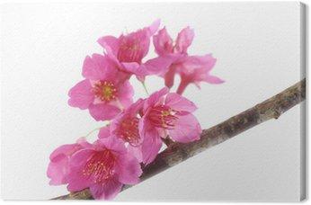 Tableau sur Toile Oriental cherry