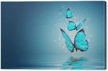 Tableau sur Toile Papillon