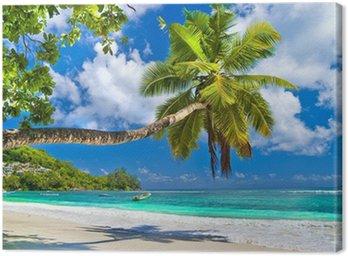 Tableau sur Toile Paysage tropical idyllique - les Seychelles