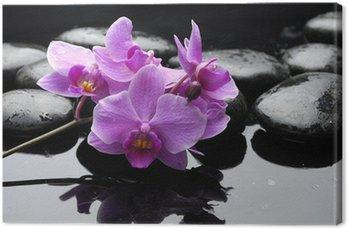 Tableau sur Toile Pierres de thérapie et de fleurs d'orchidée avec des gouttes d'eau