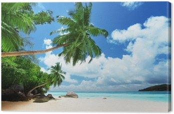 Tableau sur Toile Plage sur l'île de Mahé aux Seychelles
