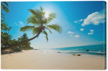 Tableau sur Toile Plage tropicale au soleil