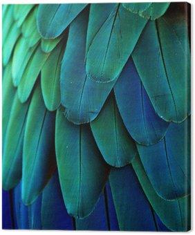 Tableau sur Toile Plumes d'ara (bleu / vert)