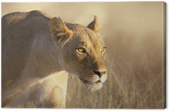Tableau sur Toile Portrait Lioness