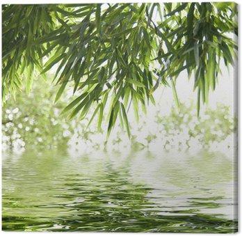Tableau sur Toile Reflets de feuilles de bambous