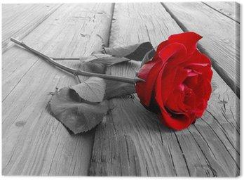Tableau sur Toile Rose sur bois pc