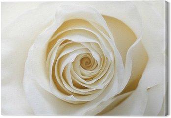 Tableau sur Toile Rose white