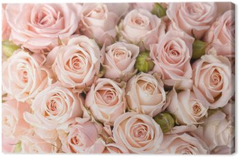 Tableau sur Toile Roses roses fond lumineux
