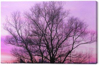 Tableau sur Toile Silhouette d'un vieux arbre sur fond magnifique coucher de soleil violet rétro filtré