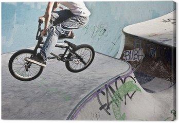 Tableau sur Toile Skatepark im BMX