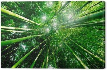 Tableau sur Toile Souhaitez Bambou Forêt