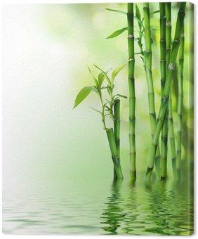 Tableau sur Toile Tiges de bambou sur l'eau
