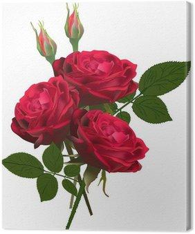 Tableau sur Toile Trois roses rouges bouquet isolé sur blanc