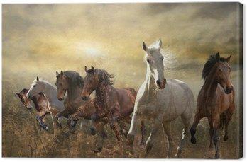 Tableau sur Toile Troupeau de chevaux au galop libre au coucher du soleil