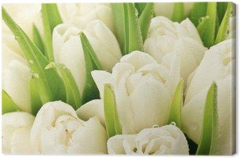 Tableau sur Toile Tulipany