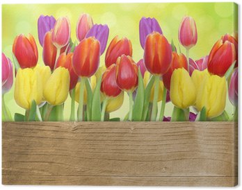 Tableau sur Toile Tulipes avec panneau de bois