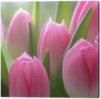 Tableau sur Toile Tulipes roses