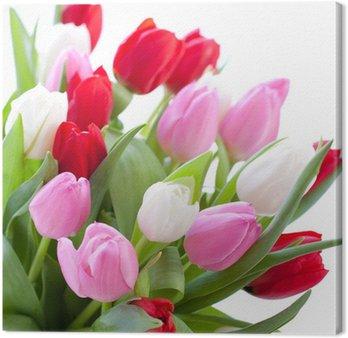 Tableau sur Toile Tulipes rouges, rose et blanc