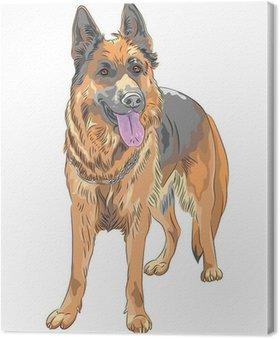 Tableau sur Toile Vecteur couleur croquis chien berger allemand race
