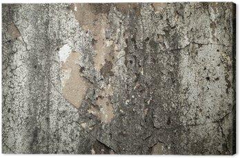 Tableau sur Toile Vieux mur rugueux