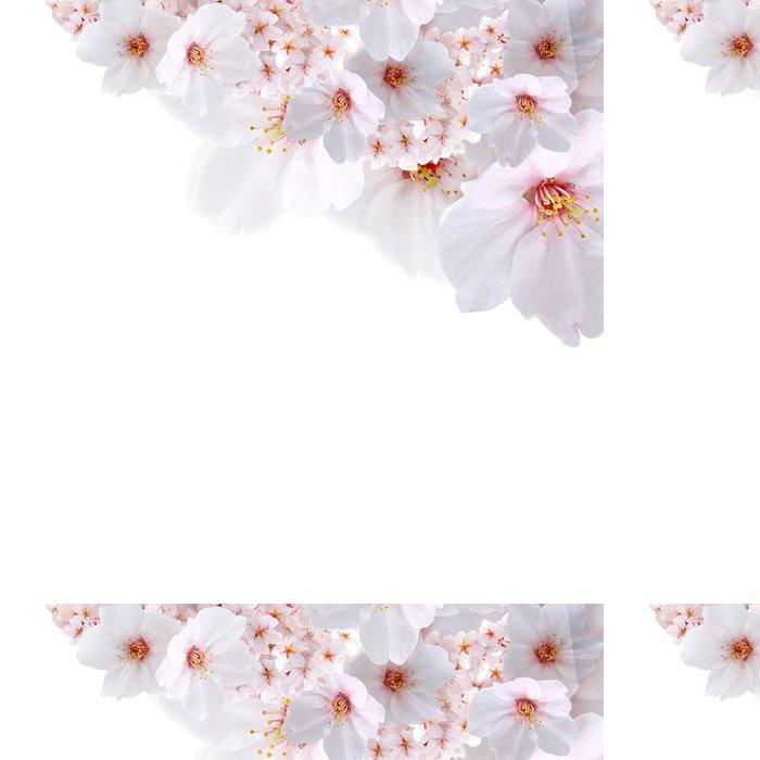Vinylová Tapeta 春 向 け 桜 斜 め 配置 - Roční období