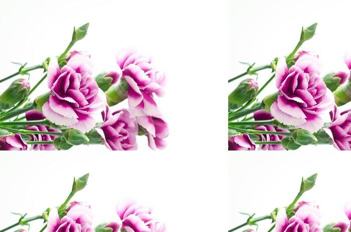 Tapeta Pixerstick 紫 の グ ラ デ ー シ ョ ン の カ ー ネ ー シ ョ ン の 花束 - Květiny