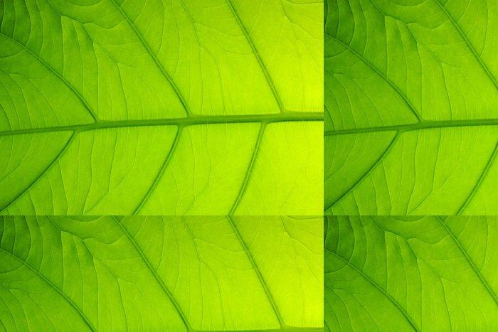 Vinylová Tapeta 葉 の 背景 - Struktury